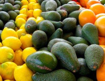 Frutas Con Más Proteínas Que Hidratos