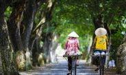 5 curiosidades que no todos conocen de Vietnam