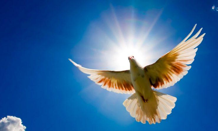 ¿Qué implica creer en el Espíritu Santo?